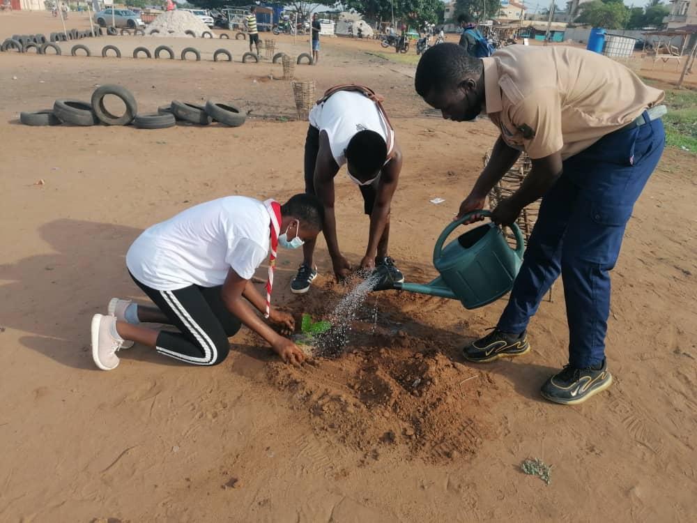 Les Scouts du Togo mettent à terre 150 plants le 1er Juin 2021
