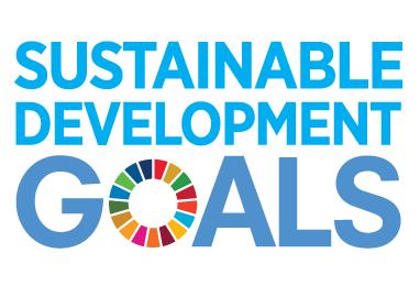 SDG logo no un emblem square rgb