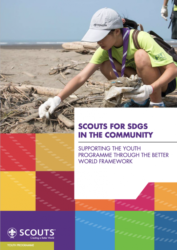 Scouts for SDG in the Community